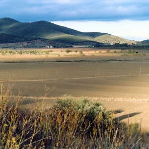 Panorama sulla Maremma dall'Isola Clodia