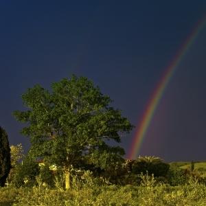 arcobaleno_sm_01.jpg