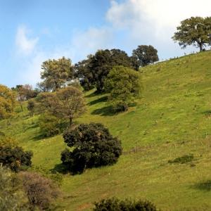 Panoramica sulle collinedi Grancia
