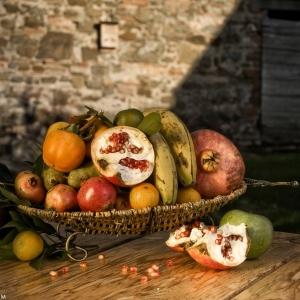 frutta-in-giardino_01
