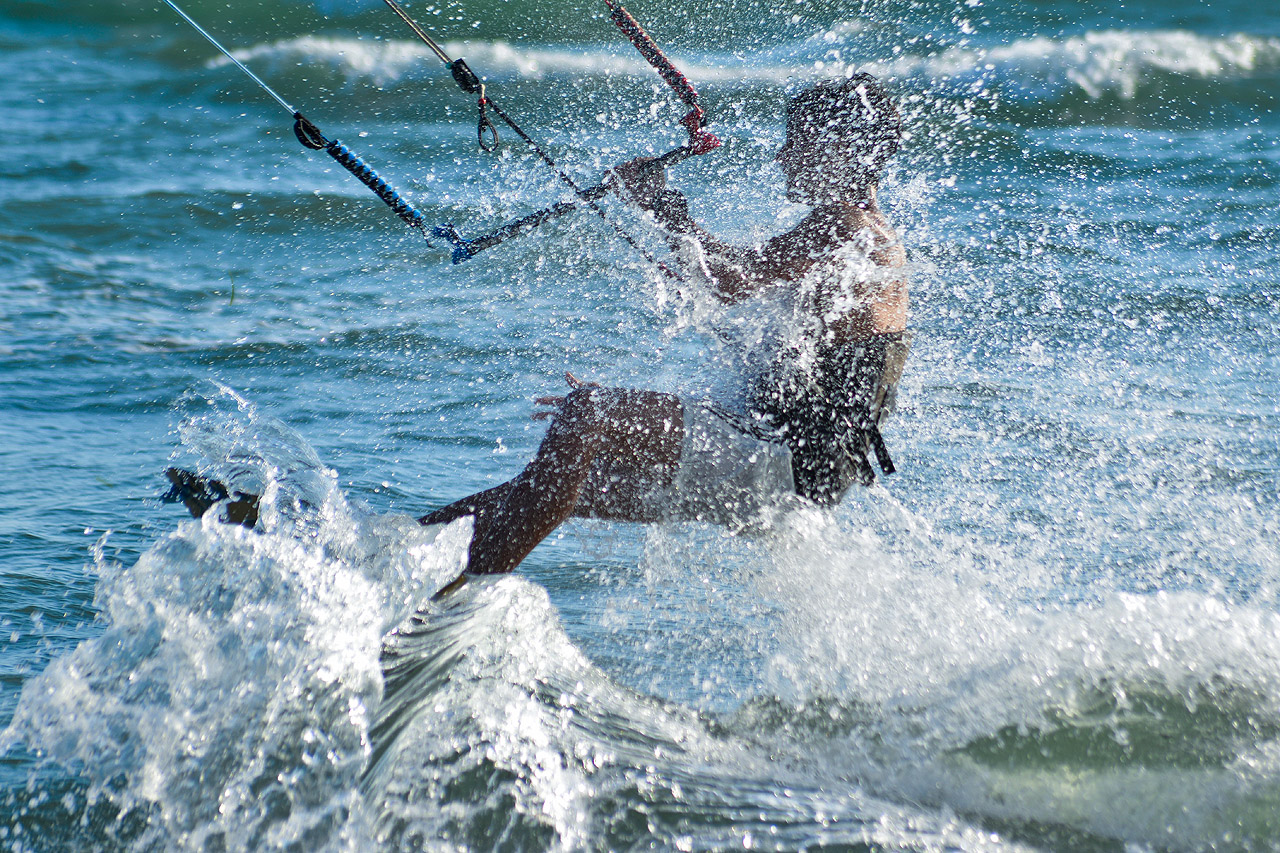 Spiaggia: kite e cani
