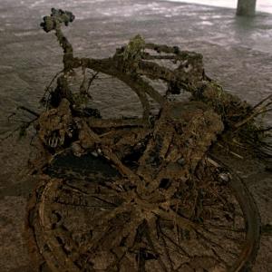 Scoglio di bicicletta