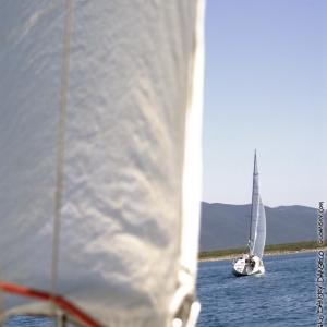 mare_luglio2007_12.jpg