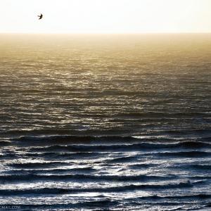Mare mosso dalla collina di Castiglione della Pescaia