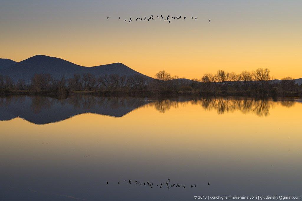 alberese-uccellina-tramonto-grosseto