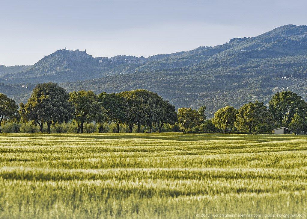 panorama-roccatederighi-querce