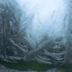 Bosco ghiacciato dietro alle formazioni sul parabrezza dell'auto