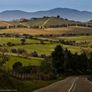 Colline di Magliano in Toscana