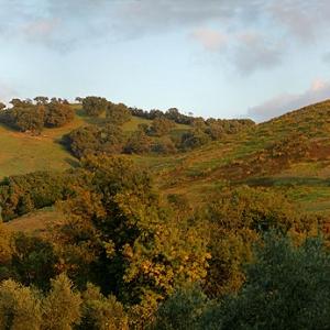 Panoramica di Spadino, Grancia