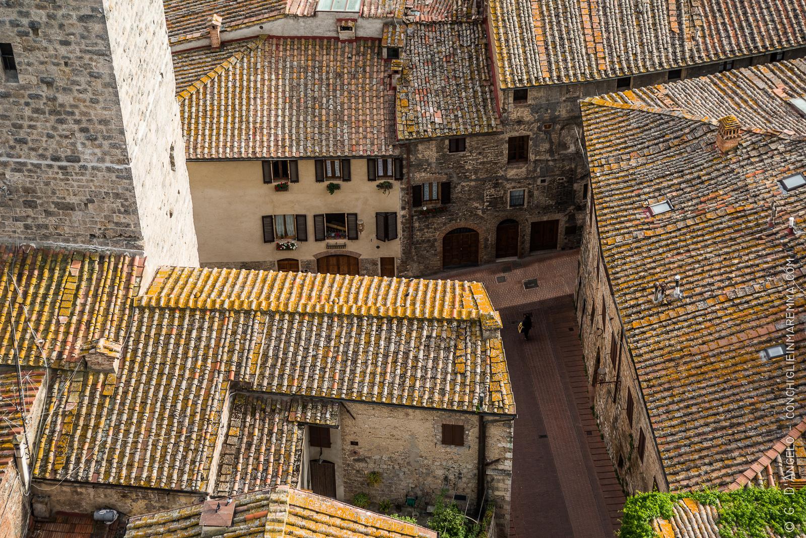 Tetti di San Gimignano